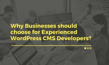 Businesses choose Experienced WordPress Developer